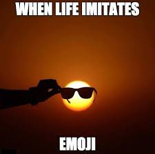 Funny Memes About Life - when life imitates emoji funny memes