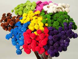dried floral button flowers decorative floral buttons