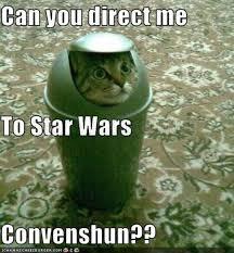 Star Wars Cat Meme - star wars cats animals