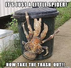 Meme Trash - take the trash out meme on imgur