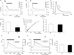 enhanced ca2 activated na ca2 exchange activity in canine