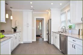 Spray Painters For Kitchen Cabinets Kitchen Best Paint For Painting Cabinets What Paint To Use On