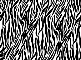 43 top selection of zebra print wallpaper