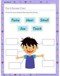 the 25 best 5 senses worksheet ideas on pinterest