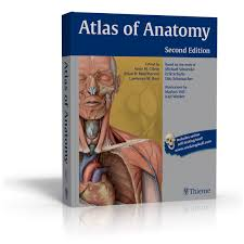Netter Atlas Of Human Anatomy Online What You Need To Know About Thieme U0027s Atlas Of Anatomy Med