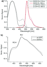 mutagenic induction of an ultra fast water chain proton wire