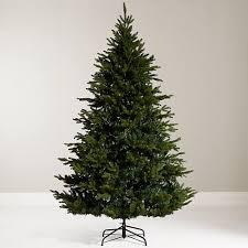 christmas tree shop online buy lewis 7ft kensington fir christmas tree online at johnlewis