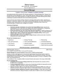 It Executive Resume Examples Executive Resume Nardellidesign Com