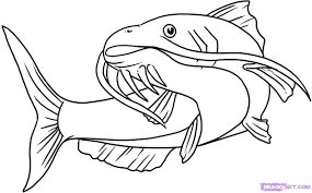 coloring pages catfish coloring page free catfish coloring pages