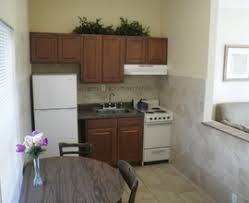 efficiency kitchen ideas apartment kitchen efficient staradeal com