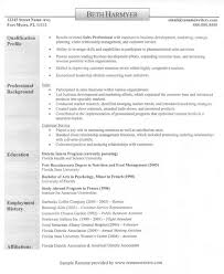 Imagerackus Pleasing Images About Best Resume And Cv Design On Pinterest Good With Great Sales Rep Get Inspired with imagerack us