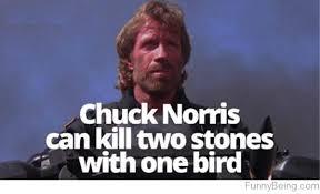 Chuck Norris Beard Meme - 100 funny selected chuck norris memes