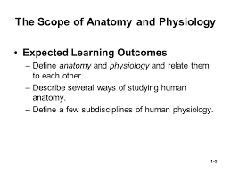 Human Anatomy And Physiology Notes 1 Chapter 01 Lecture Outline Copyright Mcgraw Hill Education
