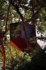 tree snake houses rebelo de andrade tiago ricardo oliveira alves