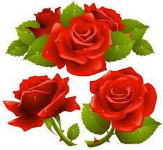 Black Rose Flower Black Rose Flower Frame Free Vector Download 20 524 Free Vector