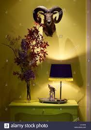 decorative side table under hunter u0027s trophy modern colors stock