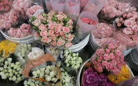 flower wholesale gassafy home