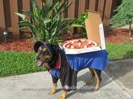 Halloween Costumes Large Dogs 158 Pet Halloween Costumes Images Homemade
