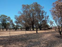 Mount Lindesay Highway Wikipedia 2009 U201310 Australian Bushfire Season Wikipedia
