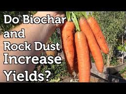 Rock Dust For Gardens Do Biochar And Rock Dust Increase Garden Yields