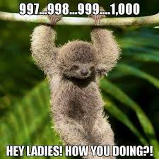 Cute Sloth Meme - deluxe sloth meme images the gallery for cute sloths in trees