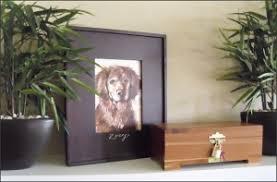 Dog Burial Backyard Question Feng Shui U0026 Pet Burial Luminous Spaces