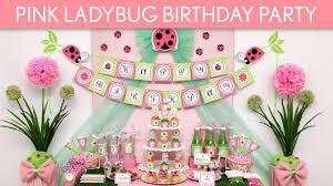 pink ladybug birthday party ideas pink ladybug b114 youtube