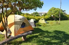 tent platform camping truths in taiwan dreadlock travels