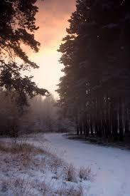 biegun zimna gajec pl