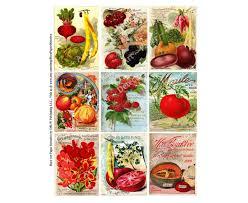 antique seed catalog covers digital sheet vintage flower