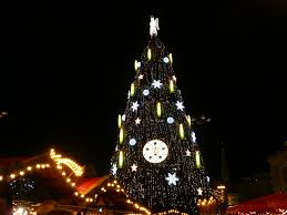 best christmas lights in the world the world u0027s tallest christmas tree lucky 2b here