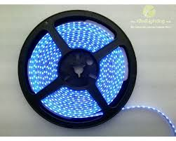 335 smd led strip lights kiwi lighting