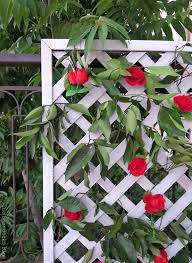 flowers store make an easy colorful fence with dollar store flowers the