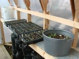 greenhouse thinman u0027s blog