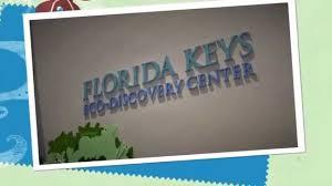 florida keys native plants florida keys minute eco discovery center key west youtube
