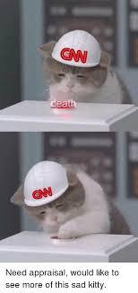 Sad Kitty Meme - 25 best memes about sad kitty sad kitty memes