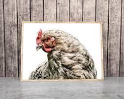 chicken print etsy