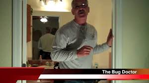 roaches in my bathroom big trouble with big roaches in your bathroom youtube