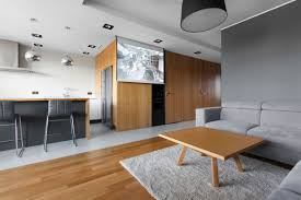 open apartment uses wood to define its interior spaces