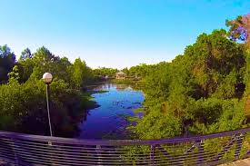 Florida Natural Attractions images Florida botanical gardens st petersburg clearwater attractions jpg