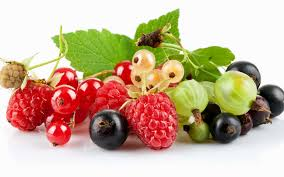 adorable fresh raspberries images fresh raspberries wallpapers