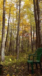 100 tree trail woodlands floor plan deeplovephotography