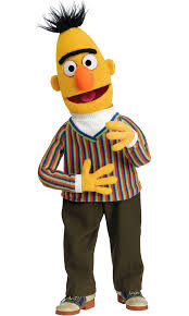 bert muppet wiki fandom powered by wikia