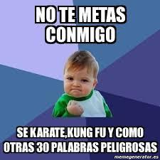 Karate Memes - meme bebe exitoso no te metas conmigo se karate kung fu y como