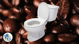 What Fruits Make You Go To The Bathroom Why Does Coffee Make You Youtube