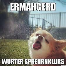 Ermahgerd Meme - ermahgerd dog weknowmemes