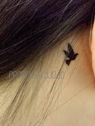 25 beautiful swallow bird tattoos ideas on pinterest swallow