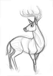 best 25 animal drawings ideas on pinterest awesome drawings