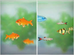 how to cycle a fish tank with pictures wikihow