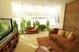Plants For Living Room Living Room Adjusting Drapes For Living Rooms With Certain Themes